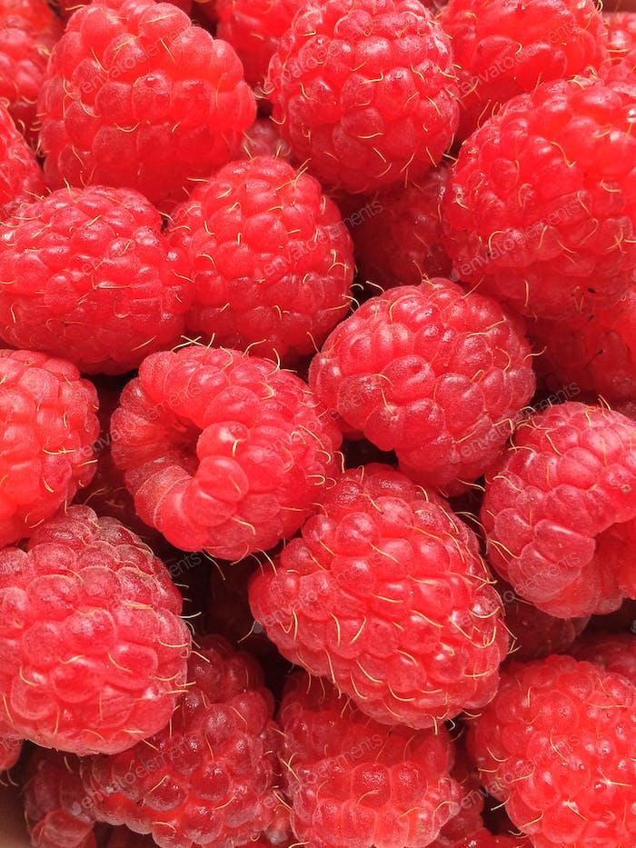 ripe juicy raspberries ☀️