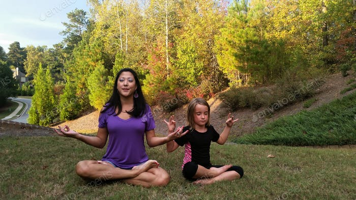 Yoga instruction in the privacy of your backyard...
