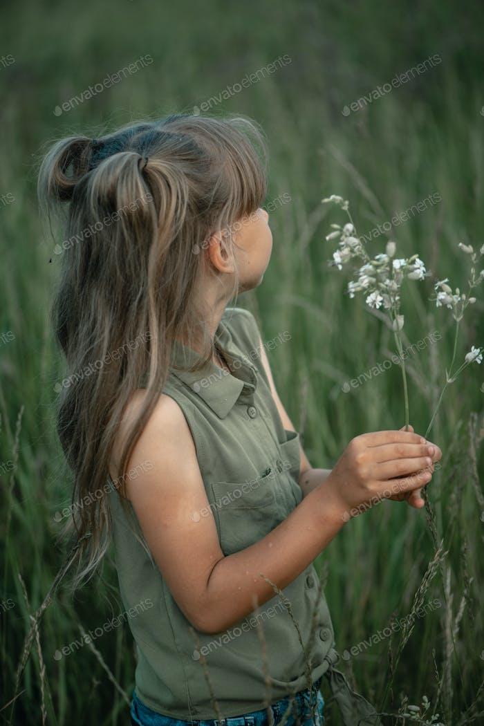niña de 6-7 años recoge flores silvestres en un campo en una noche de verano