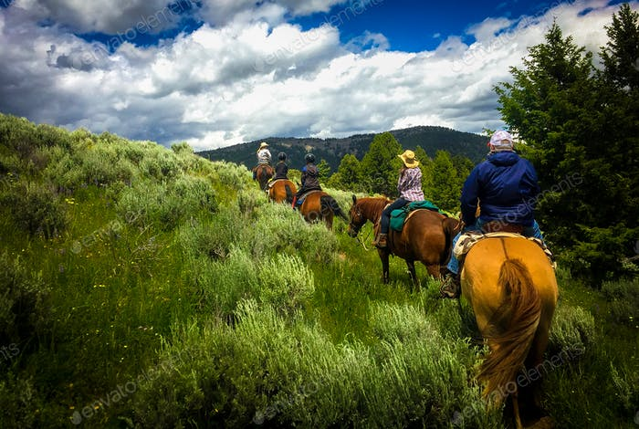 Horseback riding in Montana's great outdoors