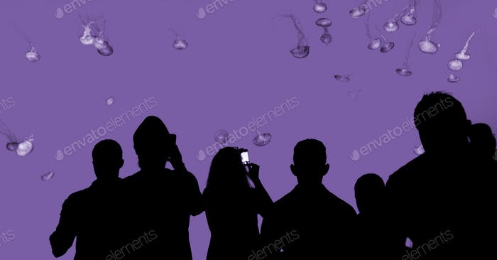 Silhouette of people observing jellyfish - purple colored