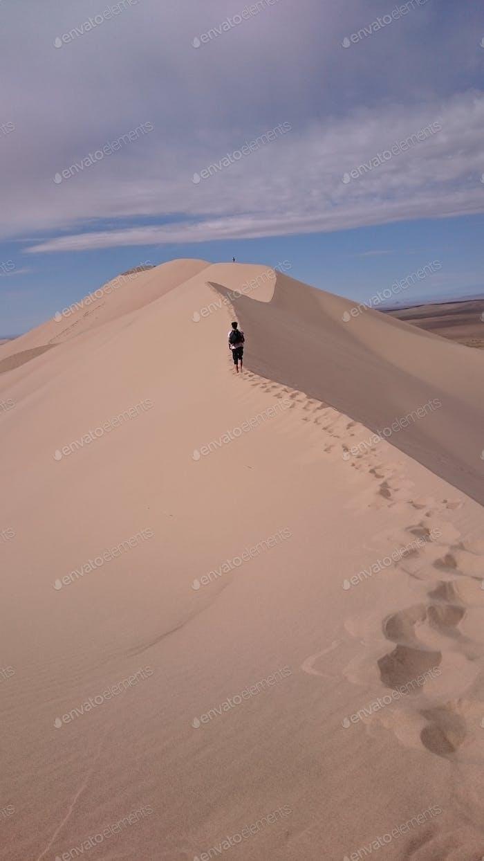 Sanddünen, Wüste Gobi; Mongolei