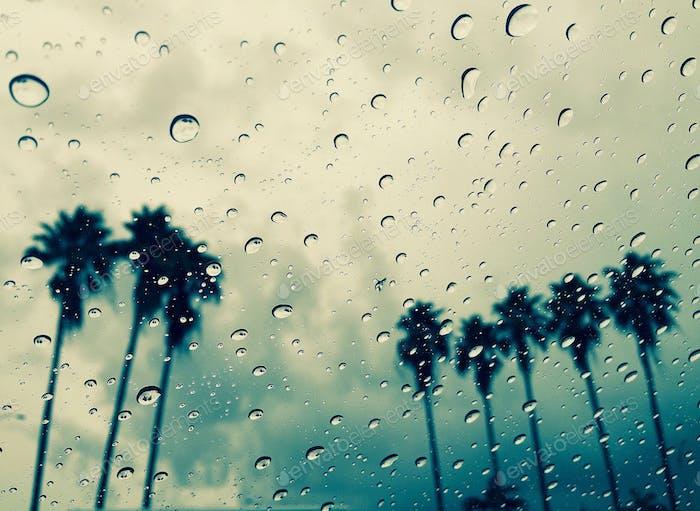 Rain Rain Go Away ... Florida's Tornado Warning