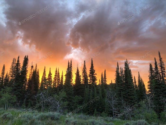 Sonnenuntergang in den Bergen von Wyoming