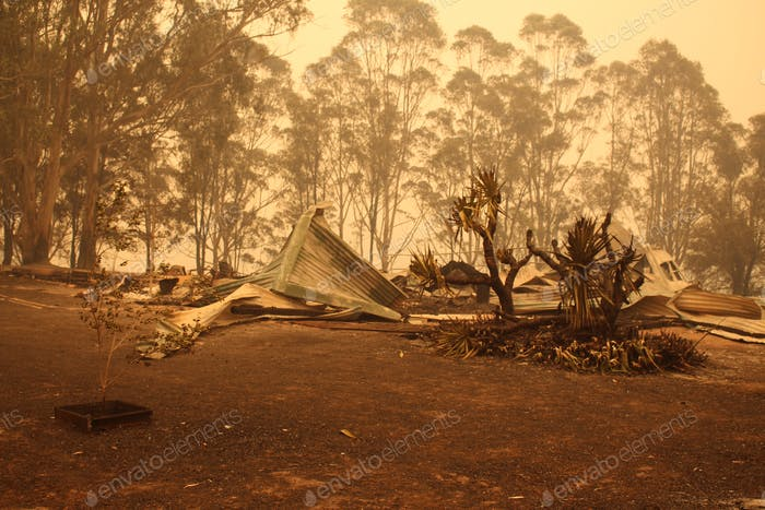 Some of the devastation from the current bushfires in australis