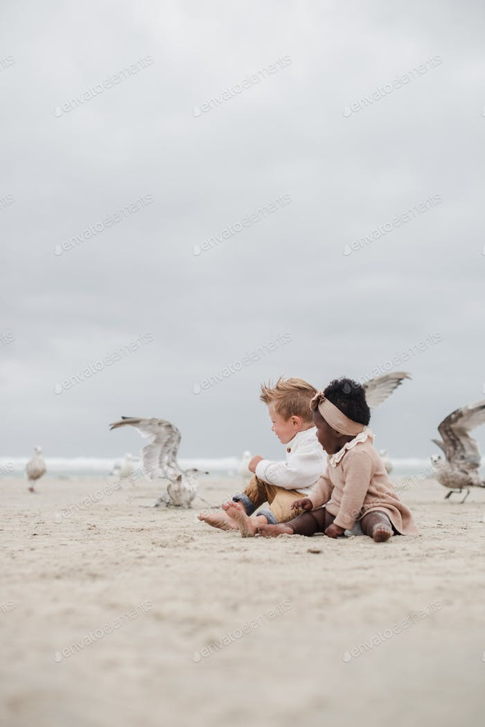 Brother and sister excited about seagulls flying around them on the beach - in wonder of nature