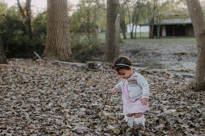 Toddler girl standing in the leaves