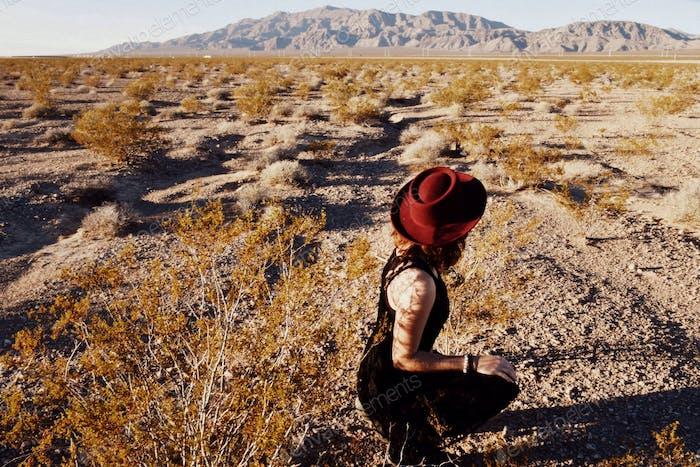 Desert in Las Vegas