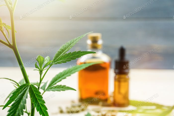 Cannabis Cbd oil products