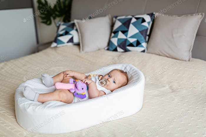 Cute baby three months old lying in cocoon at home. Kid holds stuffed sound toy, sucks nipple