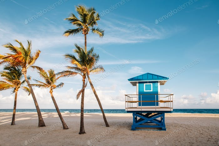 lifeguard house; tropical; landscape; palm trees; beach; empty; Hollywood; ocean; sea; sunset;