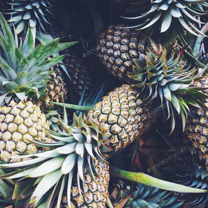 Tropische Ananas 🍍 Hintergründe