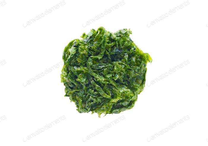 Sea lettuce isolated on white background
