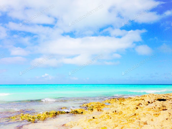 A beach with turquoise water