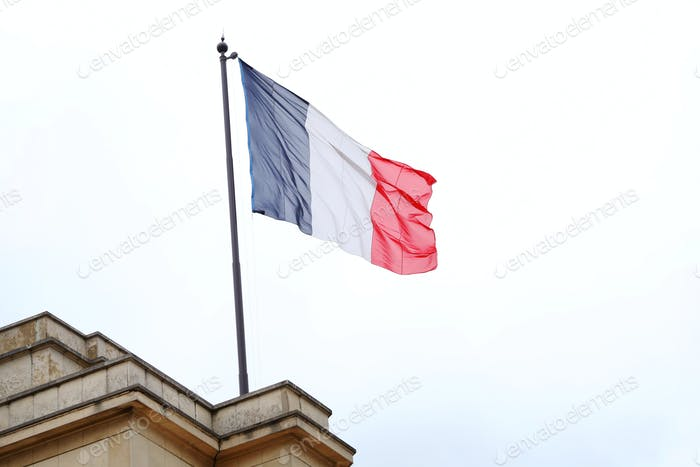 The flag of France