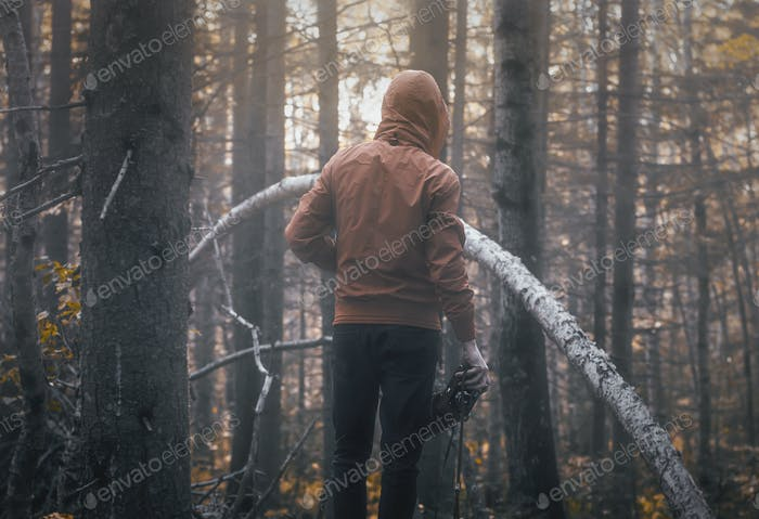 Alone in the moody fall forest.