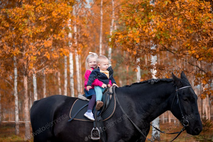 Cute toddlers boy and girl having fun on a black horse ride enjoying family weekend on a beautiful