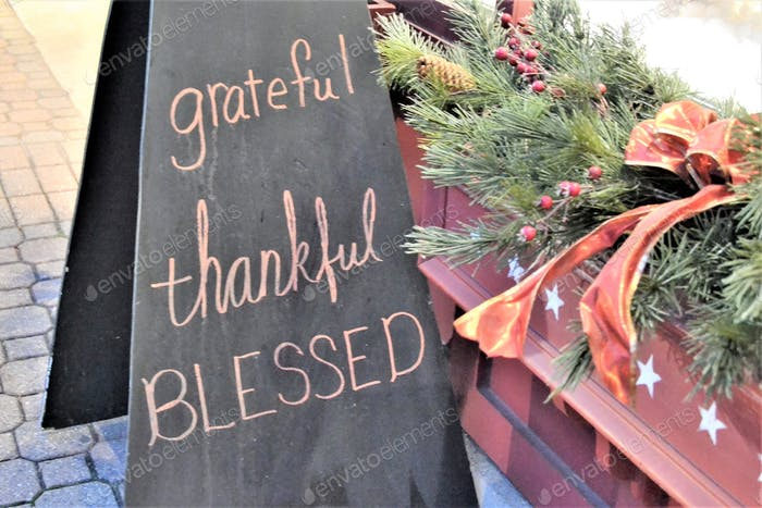 Words in the wild grateful thankful blessed