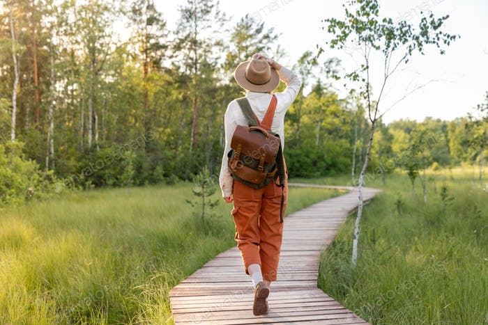Woman naturalist walking on path through peat bog swamp on ecological hiking trail at sunset.