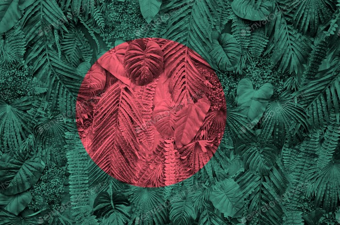 Bangladesh flag depicted on many leafs of monstera palm trees. Trendy fashionable background