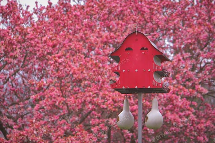 Ein orientalisches Vogelhaus.