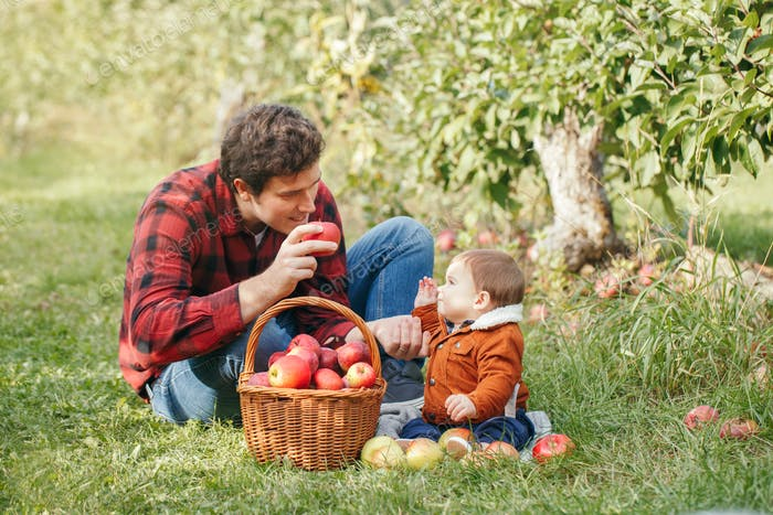 farm; apple; autumn; basket; baby; father; fall; pick; family; together; gather; caucasian; countrys