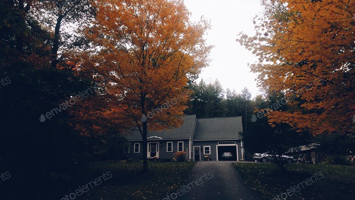 A New Hampshire Home