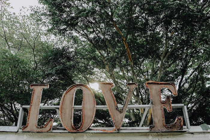 Wild words love signboard on garden