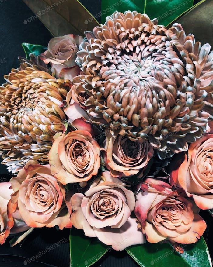 Schöne exotische Blumen
