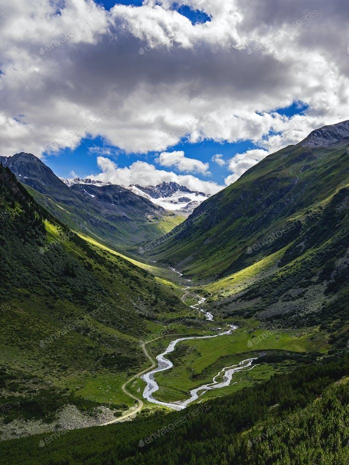 Wilde Schweiz