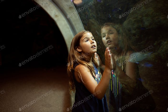 Girl at aquarium looking at ocean fish. Reflection on glass.