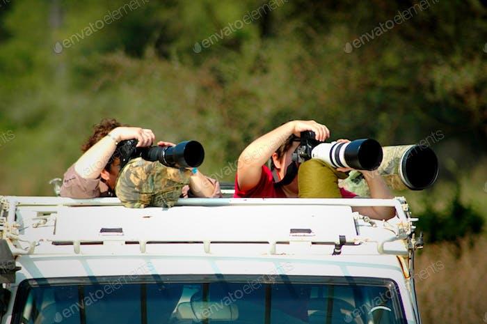 Auf einer fotografischen Safari...