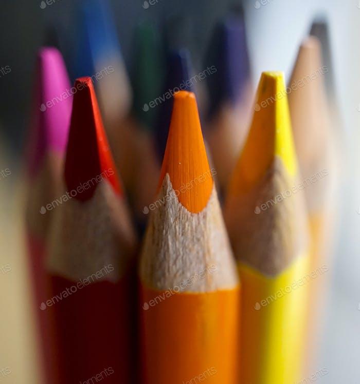 Colors alive