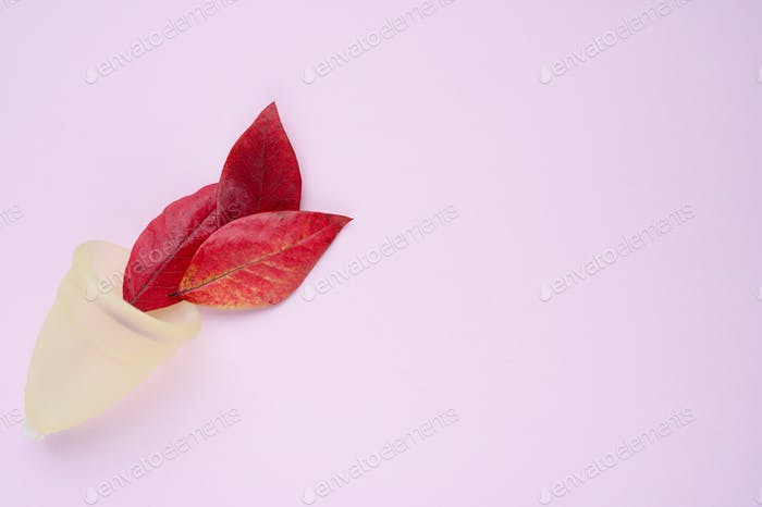 Menstrual cup with red fall leaves on pink background