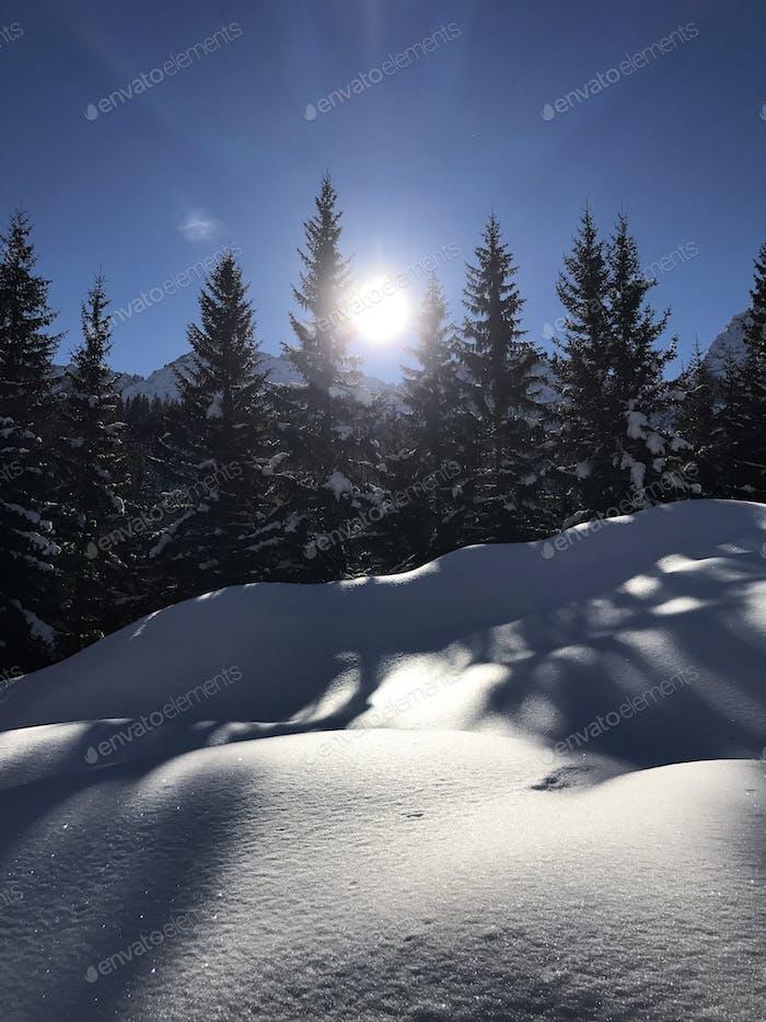 Frosty winter wonderland in...