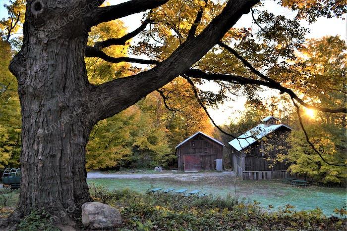 Beautiful historical farm dating back to 1846! Sunrise