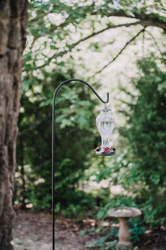 A glass hummingbird feeder