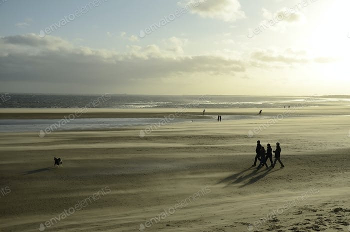 Windswept beach 2