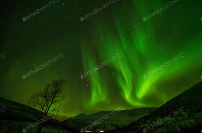 Aurora over Tromso, Norway Definitely bucket list item to capture this, totally amazing to witness.