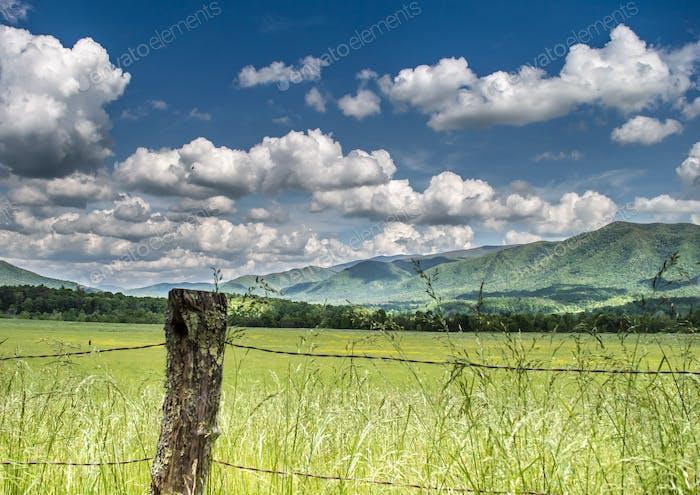 Smokey Mountains in the Spring