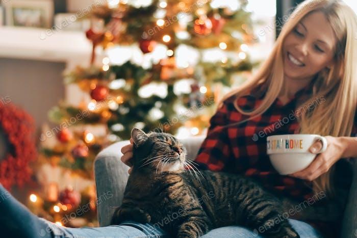 Tabby cat sitting on woman's lap