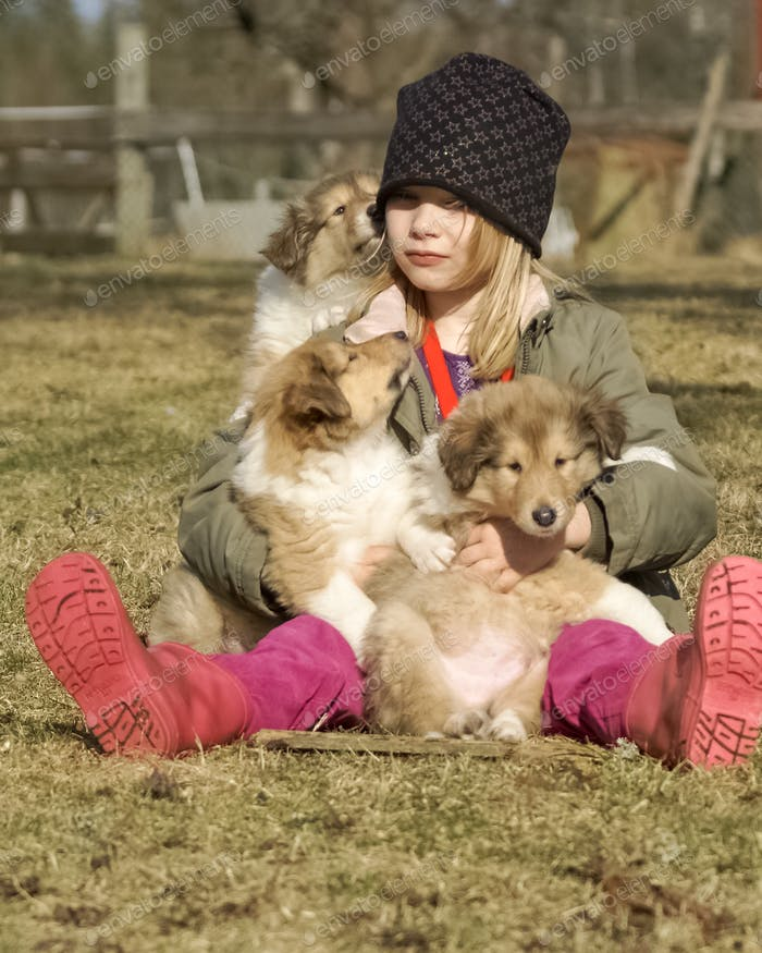 A girl with rough collie puppies