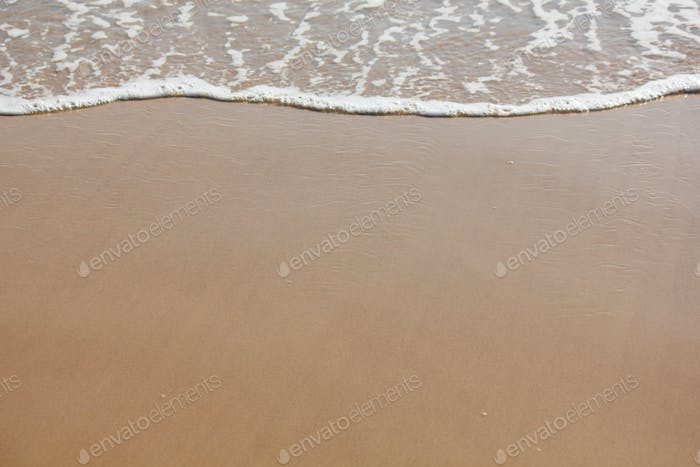Shoreline with gentle foam of waves settling in at the water's edge on the beach