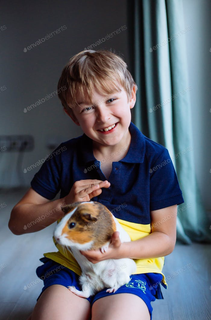 laughing kid stroking a guinea pig