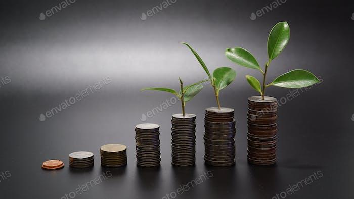 Banca y ahorros