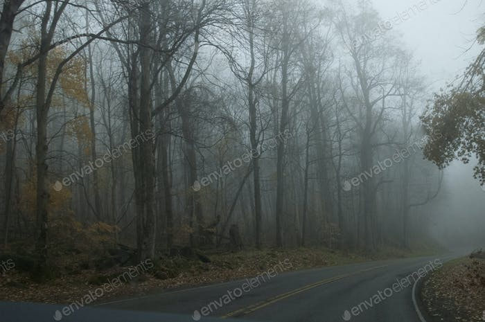 Driving the Appalachian Trail, North Carolina 2014