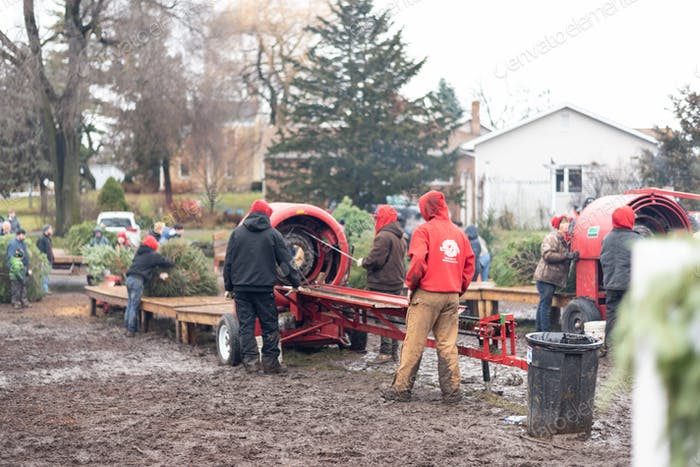 Men working on a bailer machine at Christmas tree lot