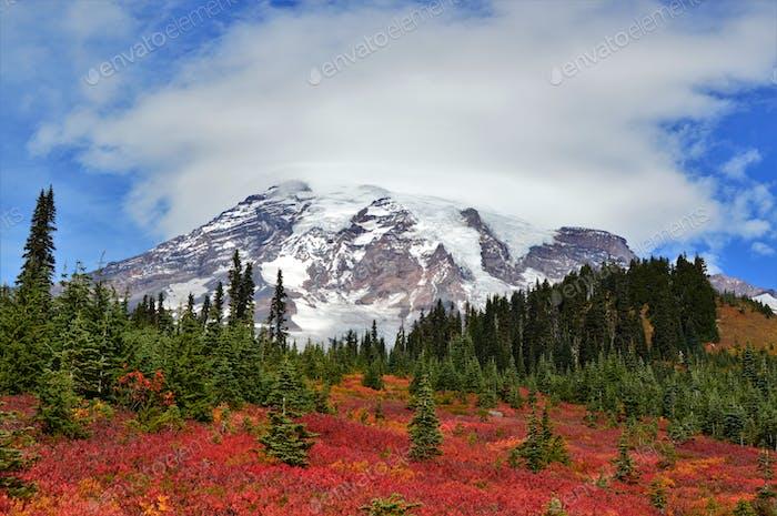 Rainier National Park, the USA