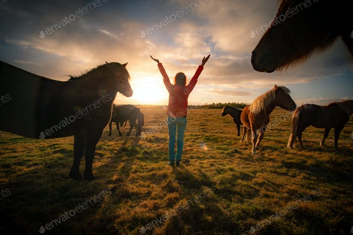 This photograph is the memory of the most beautiful awakening in Iceland