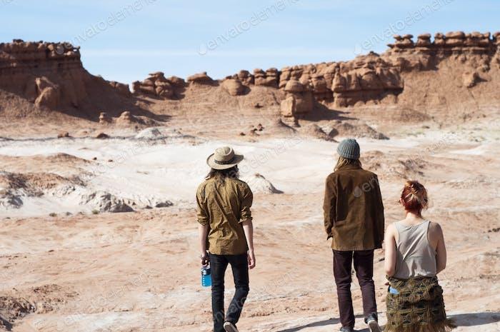 Roaming through the desert.
